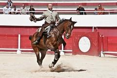 Courses, abrivados, encierros, roussatailles... site fotos 7149404937_a2807467b3_m