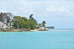Barbados-2MY_2944
