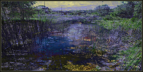 Wetlands: Dark Stream