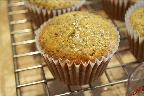 muffins/lemon chia seed 18