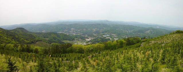 大平山 #3