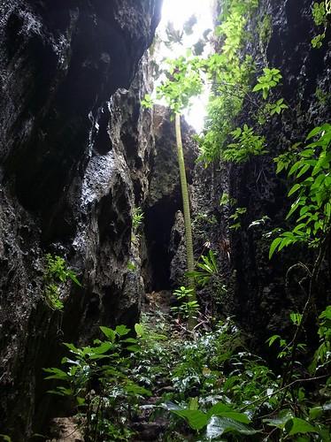 バリバリ岩 2012.05.01
