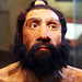 Homo neanderthalensis adult male - head model - Smithsonian Museum of Natural History - 2012-05-17 by Tim Evanson