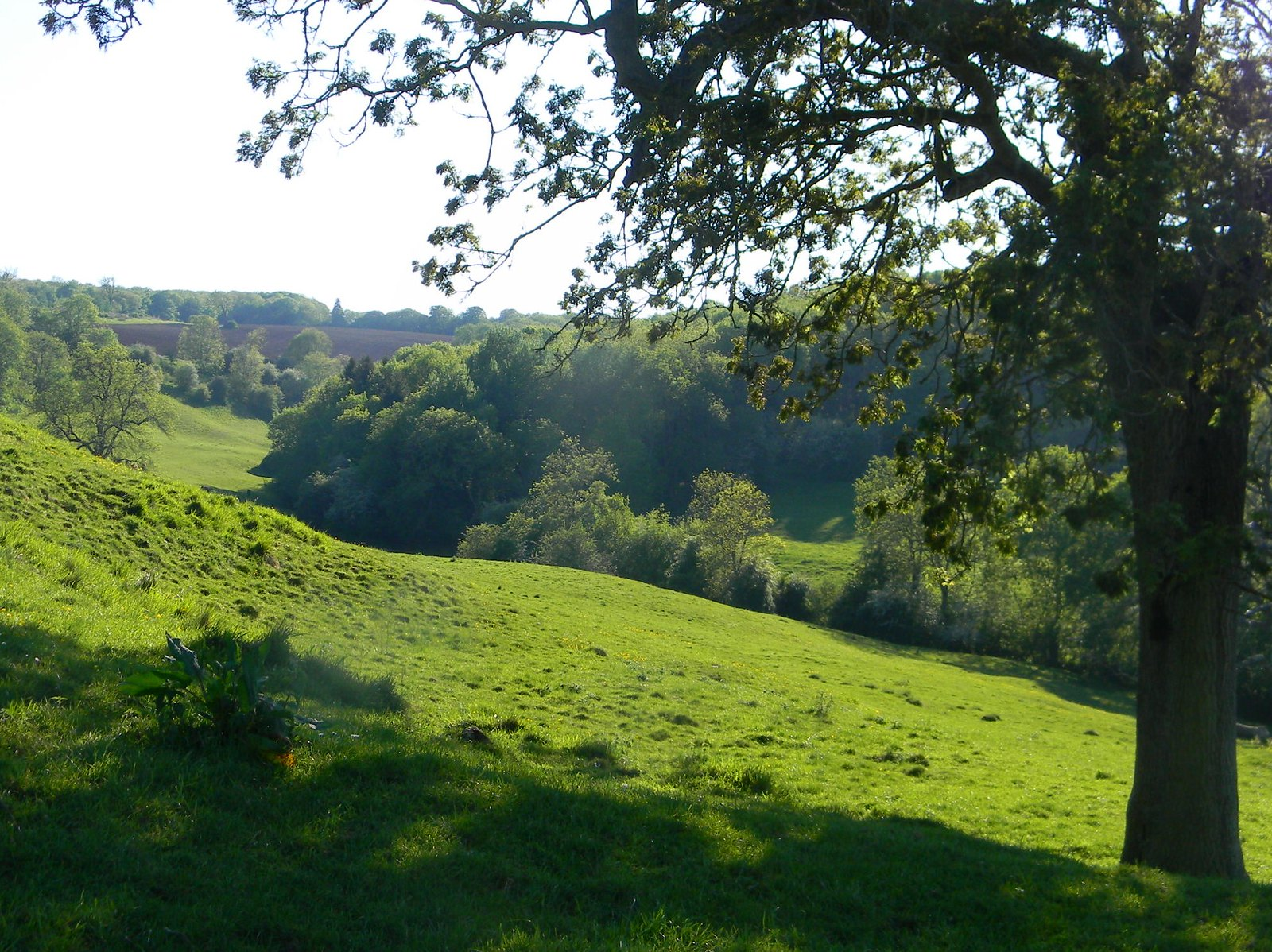 Hill before Blockley Moreton-in-Marsh Circular