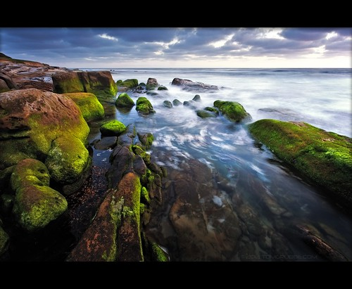 ocean sea seascape coast moss rocks sandiego dusk lajolla southerncalifornia windansea