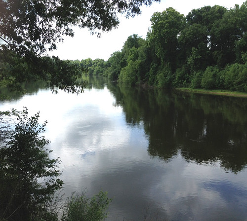 Water quality in the Wateree River is protected and improved thanks to the restoration work done on nearly 2,000 acres in Kershaw County, SC.