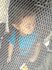 ベビーカーでお昼寝(2012/6/2)