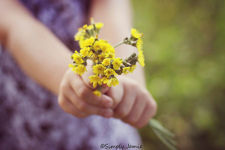 22/52~Yellow