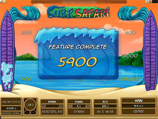 Surf Safari Prize