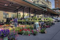 Famers market - downtown St. paul