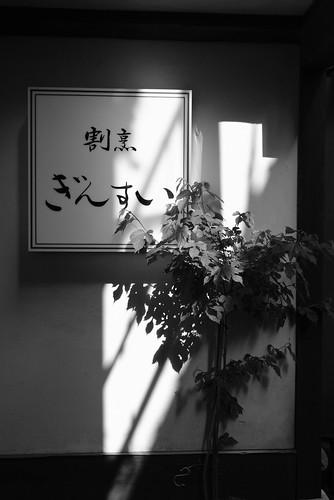 niigata monochrome 67