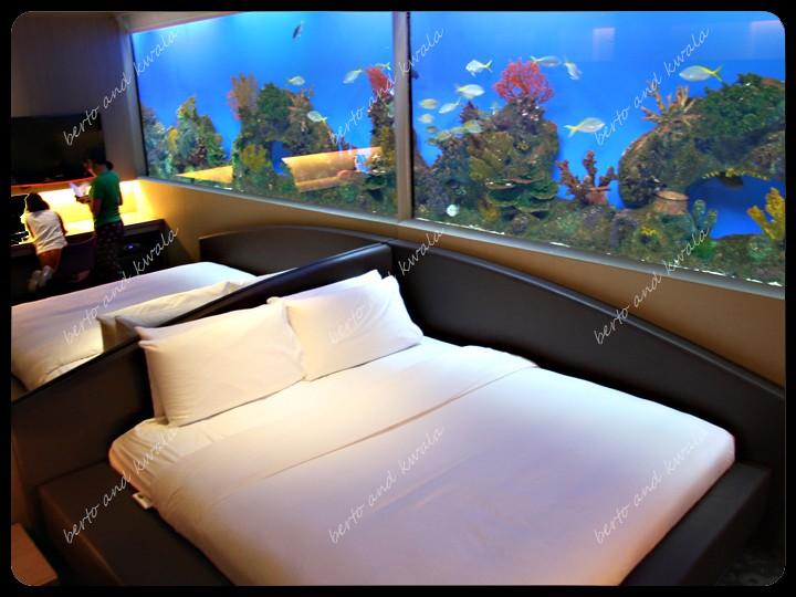 hotel H2O (1)