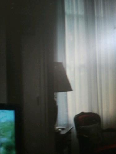 photo20120412-154059 living/dining room window.