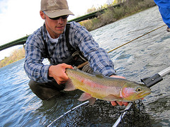 Fly fishing guide Anthony Carruesco poses a trophy Lower Sacramento River Rainbow