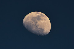 [フリー画像素材] 自然風景, 空, 月, 夜空 ID:201204072000