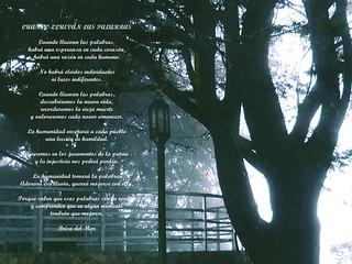 Cuando Lluevan Las Palabras (Poema)
