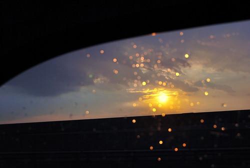 WPIR - sundrops