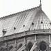Notre Dame (Paris, FRANCE)