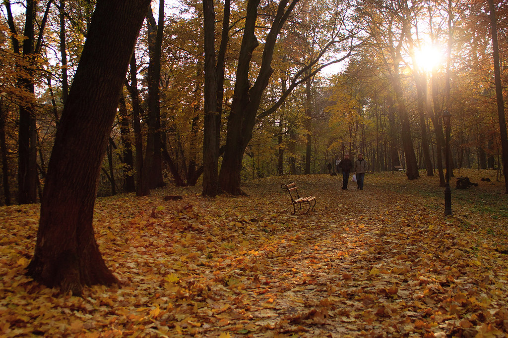 Стрийский парк. Львов © 2011 Alex Nedoviziy