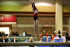 floor gymnastics(0.0), uneven bars(0.0), rings(0.0), balance beam(1.0), individual sports(1.0), sports(1.0), gymnastics(1.0), gymnast(1.0), artistic gymnastics(1.0),