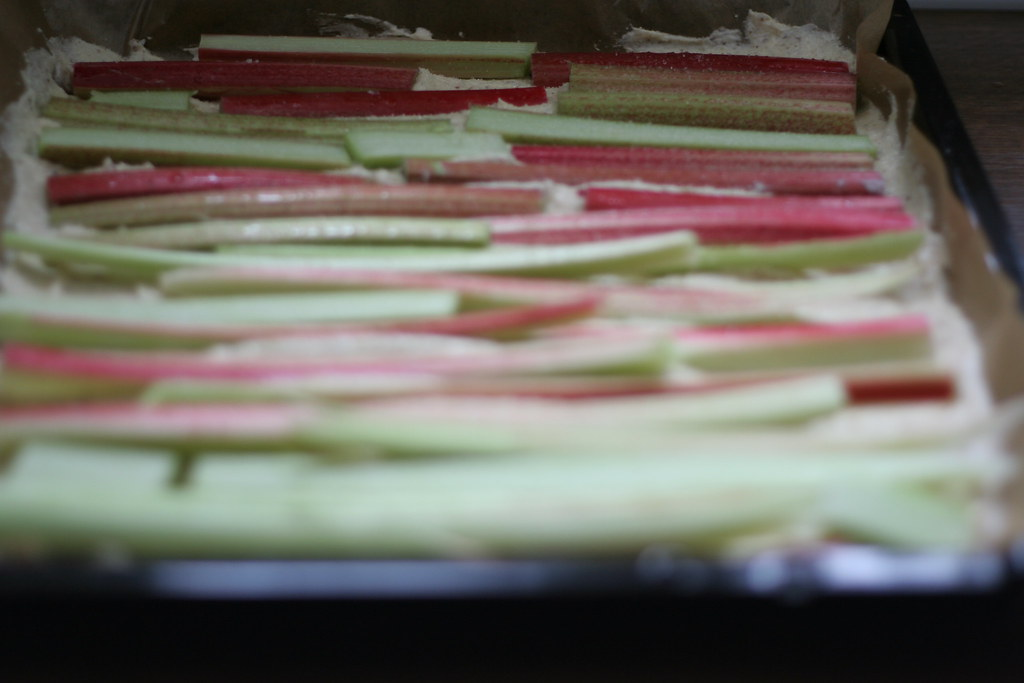 rhubarb4