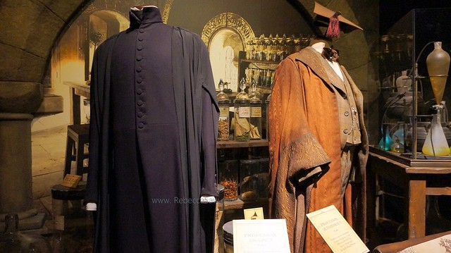 HARRY POTTER THE EXHIBITION - ArtScience Museum, Singapore (66)