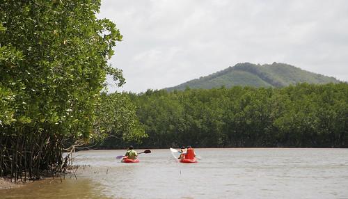 Kayaks in Phuket