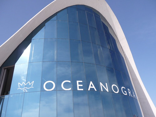 Oceanogràfic by Ginas Pics