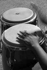 percussion, drummer, monochrome photography, drums, drum, hand drum, monochrome, black-and-white, black, skin-head percussion instrument,
