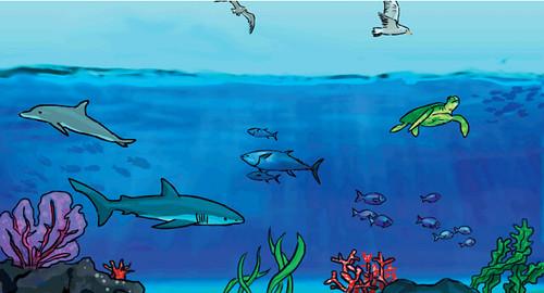 5 de Junio Dia del Medio Ambiente by Mancora Peru Perumancora.com