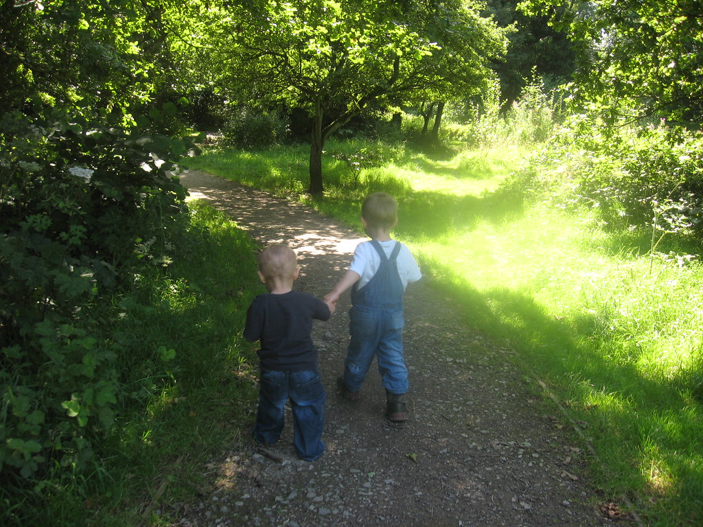 Eastham country park adventure