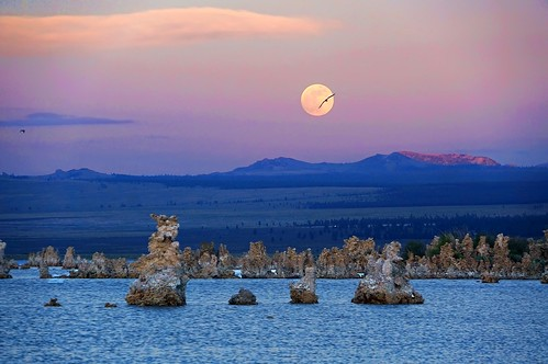 Mono Lake Moonrise