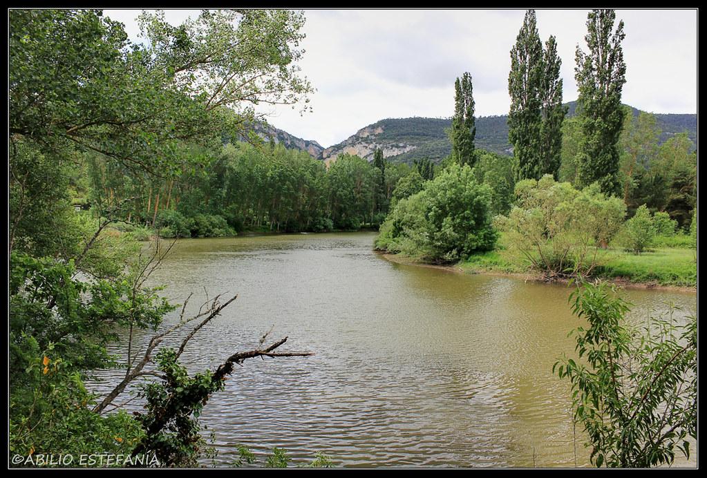 Río Ebro a su paso por Cillaperlata (Burgos) 1