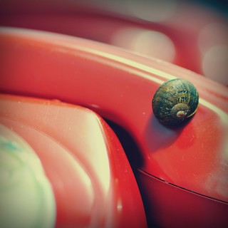 7/104 ~ Little Snail Lost!
