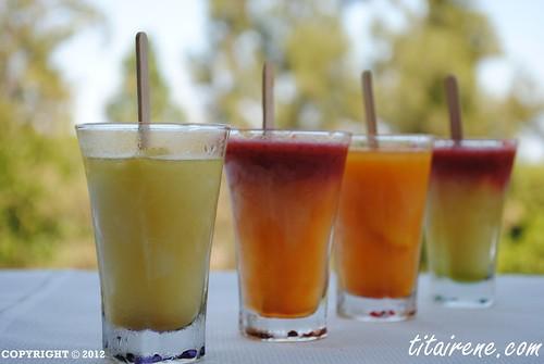 Orange Ice lollipop / Ice popsicle + Lemon Ice lollipop / Ice popsicle + Nectarine, Plum, Strawberry and Rose Hip Ice lollipop / Ice popsicle