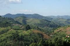 Ugandan Hills