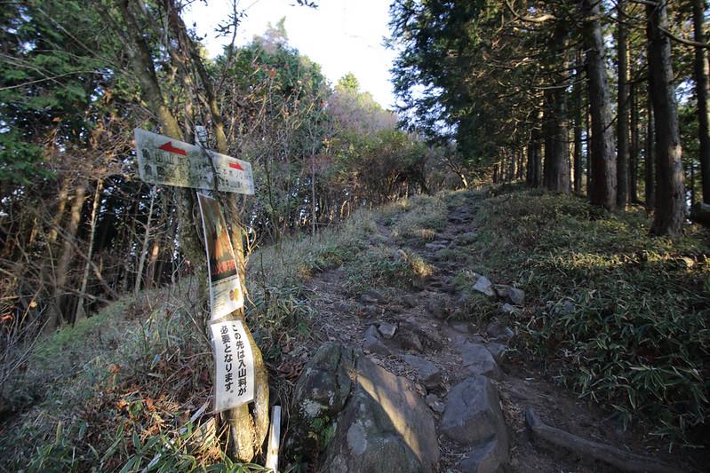 20141124-曽爾高原-0123.jpg