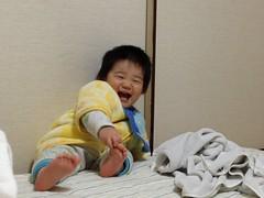 寝る前に布団で遊ぶとらちゃん(2012/4/2)