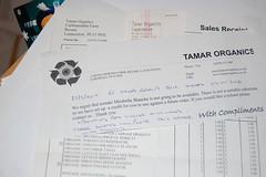 2012 04 05_tomato_0001