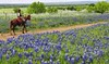 Horseback riding Texas scenic trail_wm_S