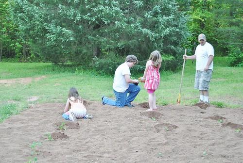 our $20 garden