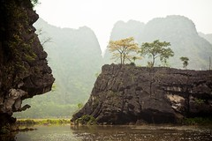 Baie d'Ha Long Terrestre - Ninh Binh - Hoa Lu - 69