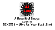 52/2012 logo
