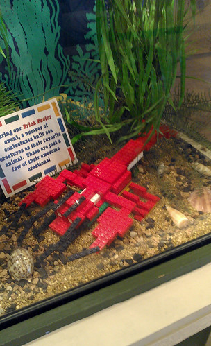 LEGO Rock Lobster Kansas City