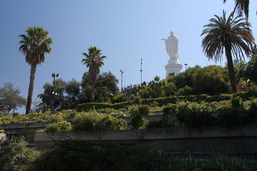 Virgin Mary and palm trees