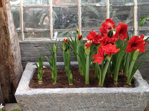 20.Apr.12 Floriade 2012