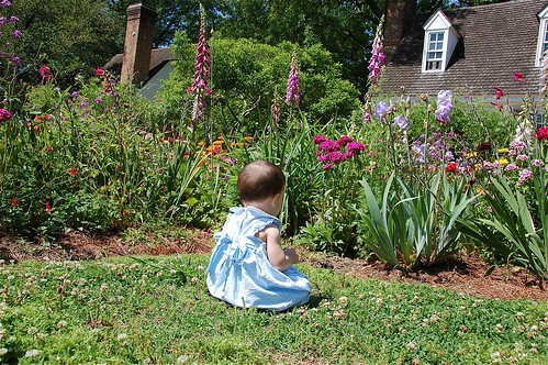 Pondering the flowers