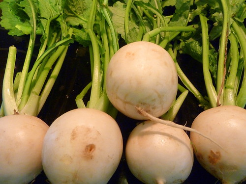 Turnips Jun 9, 2012 3-31 PM