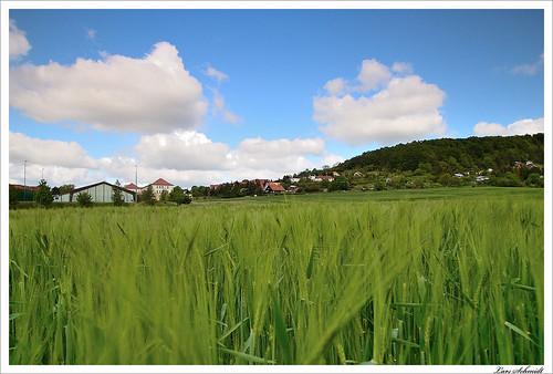 sky field clouds forest landscape feld himmel wolken 06 landschaft wald cokin stativ ndgrad 121m tamron1024mmf3545spdiiildaslif