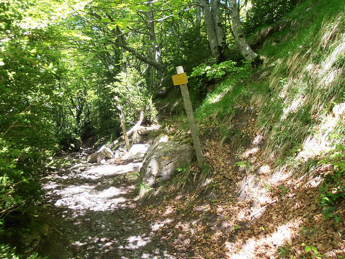 LA MATURE (chemin) 153